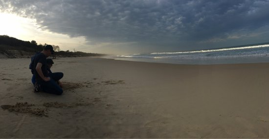 Scotts Head Beach Picture