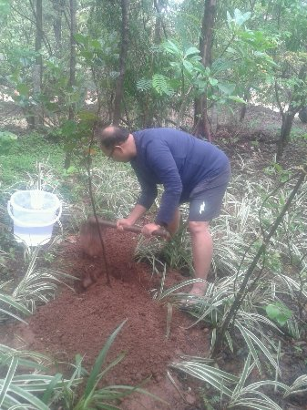 Sai Vishram Byndoor: Our repeat guest planting his 2nd tree during the monsoons