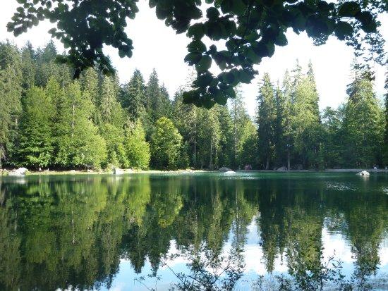 le lac vert de passy
