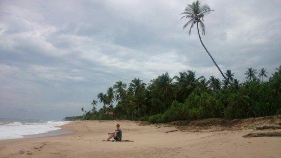 Kahandamodara, Sri Lanka: IMG-20160712-WA0069_large.jpg