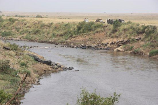 Enchoro Wildlife Camp: Great migration