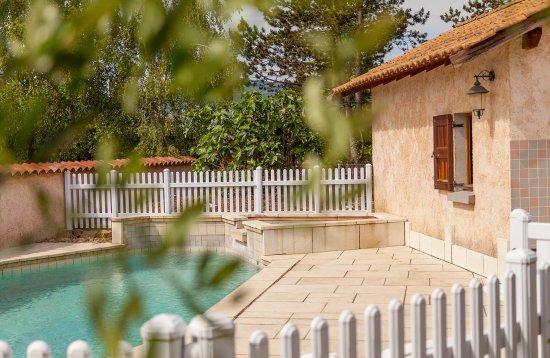 Quincie-en-Beaujolais, Francia: La piscine Chambres d'hôtes les Potins du four