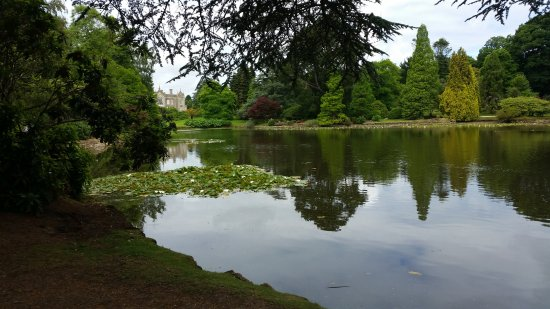 Lakes at Sheffield Park - Picture of Sheffield Park and Garden ...