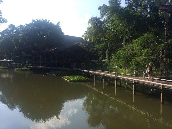 Sepilok, ماليزيا: photo2.jpg