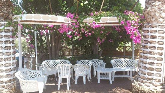 Geroskipou, Chipre: 20160714_135659_large.jpg