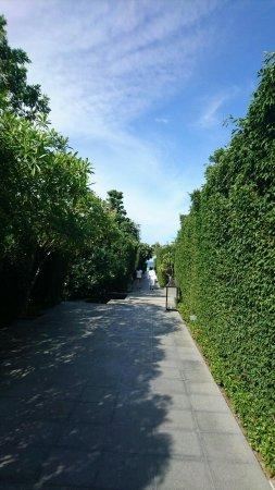 V Villas Hua Hin, MGallery by Sofitel: IMG-20160717-WA0026_large.jpg
