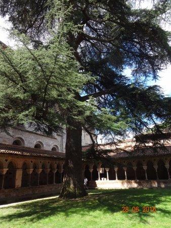 Moissac, France: Kloostergang met 200 jaar oude ceder