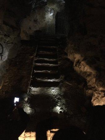 Cobbers Battlefield Tours : photo1.jpg