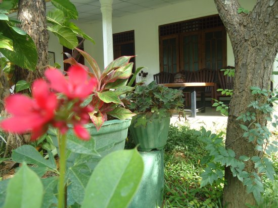 Bangalawa Guest House: main photo