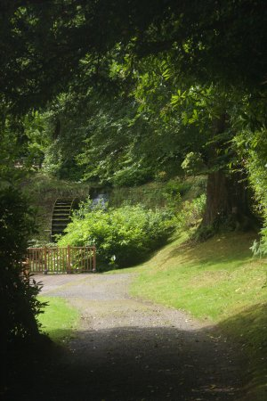 Beech Hill Country House Hotel: Lovely gardens