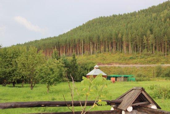 Altai Krai صورة فوتوغرافية