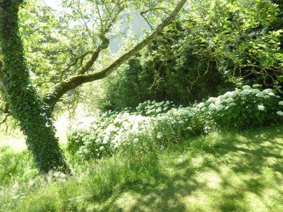 Sache, Frankrig: Le parc