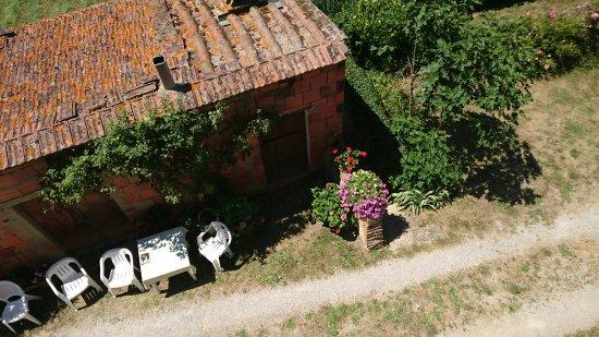 il magnifico glicine - Picture of Agriturismo Casa Bistino, Arezzo ...