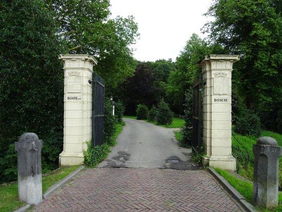 Park Boom en Bosch