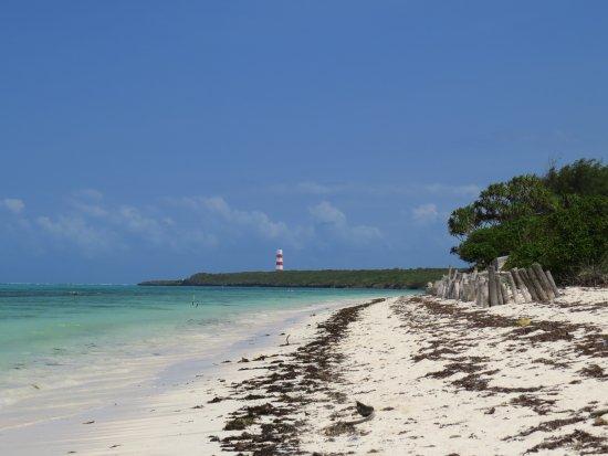 Makunduchi, Tanzania: Beach2
