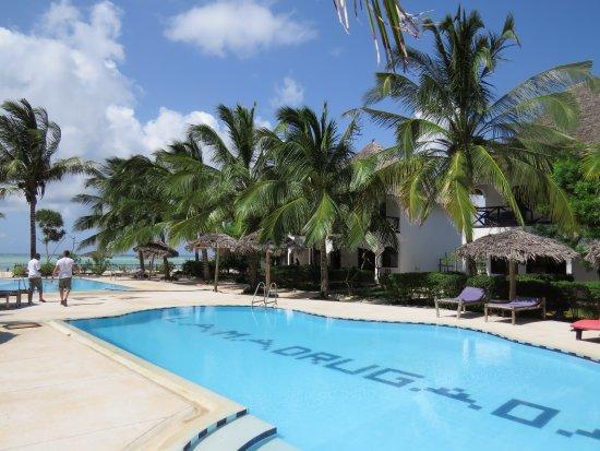 Makunduchi, Tanzanya: Pool
