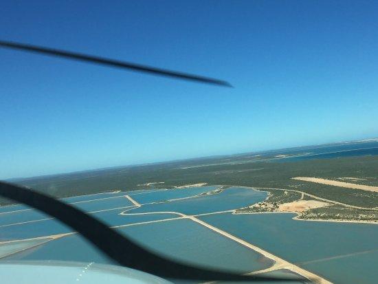 Denham, Austrália: The salt pools, some of the purest salt in the world