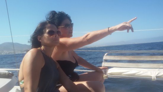 Costa Boat Charters: dolphins!