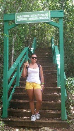 Guajataca Forest Reserve: IMG-20160718-WA0071_large.jpg
