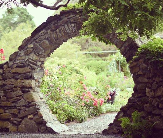 Blithewold Mansion, Gardens & Arboretum: photo2.jpg