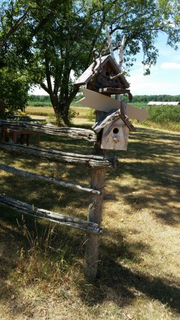 Bloomfield, Kanada: A few of the bird houses along the way to the barn