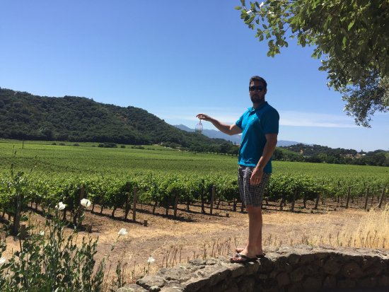 Stags' Leap Winery : photo0.jpg