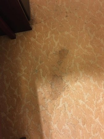 Country Inn & Suites by Radisson, Fairburn, GA: The ENTIRE room had these dirty stains on the carpet.