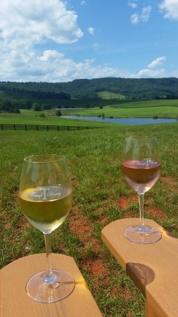 Charlottesville, VA: enjoying the wine with a view