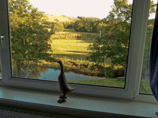 Millbrook Bed & Breakfast: View from Room 4