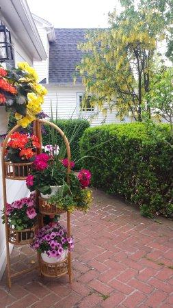Historic Wilson-Guy House: Flowers back yard