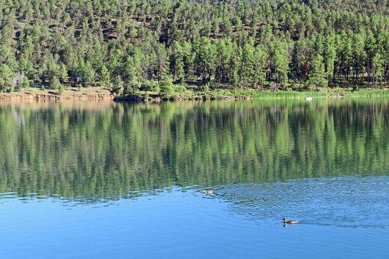 Inn of the Mountain Gods Resort & Casino : Beautiful setting next to the lake