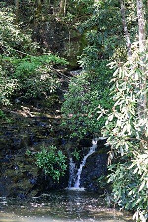 Salem, SC: waterfall almost hidden