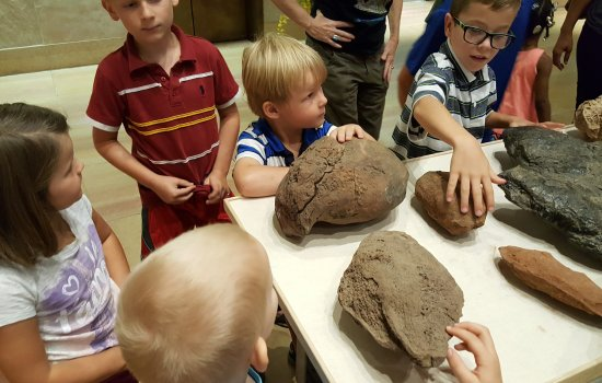 Tempe, AZ: More summer fun with rocks and fossils!