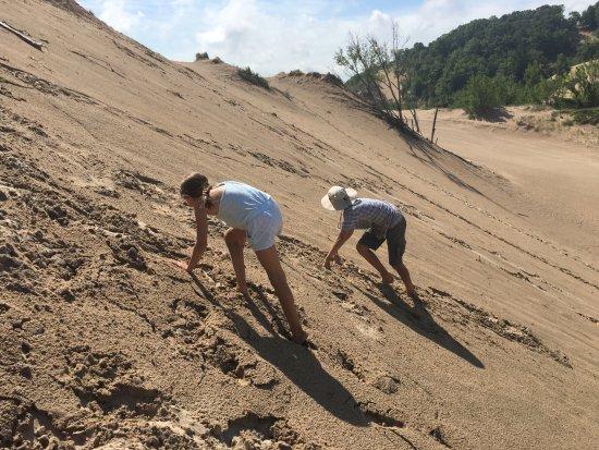 Bridgman, MI: Great fun for kids climbing the dunes.