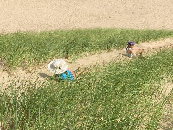 Bridgman, MI: Hiking the dunes.