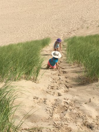 Bridgman, MI: Climbing another dune at Warren Dunes.
