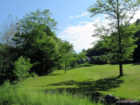 Slatyfork, WV: Morning Glory Inn nestled in the trees