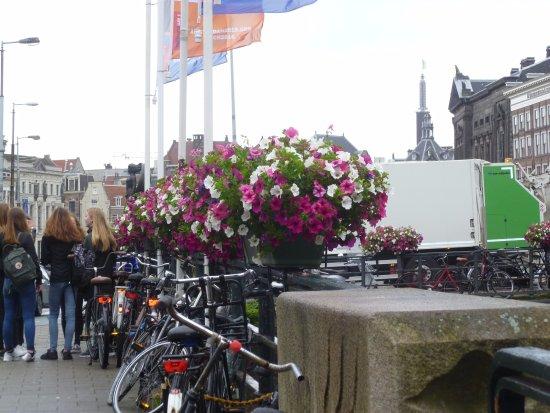Stayokay Hostel Amsterdam Stadsdoelen Photo