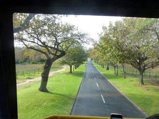 Groot Constantia - Cape Town, South Africa
