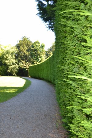 Bedale, UK: Thorp Perrow