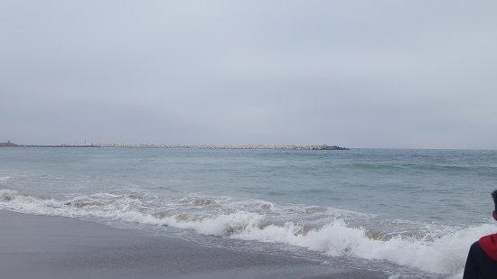 Manresa State Beach: nice empty beach