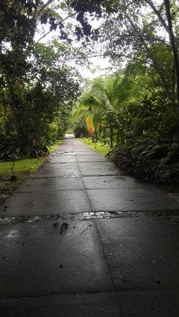 La Virgen, Κόστα Ρίκα: IMG_20160716_154720_large.jpg