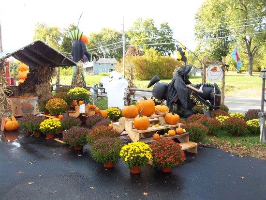 Walden, Νέα Υόρκη: Fall 2015