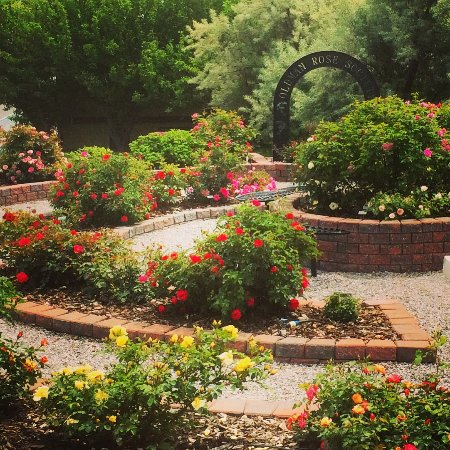 Pincher Creek, Canada: The rose garden adjacent to the Lebel Mansion