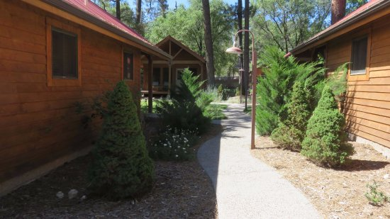 Shadow Mountain Lodge and Cabins: Walk between cabins to front door area