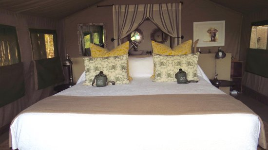 Timbavati Private Nature Reserve, Afrika Selatan: This is tent #2 - King Size Bed