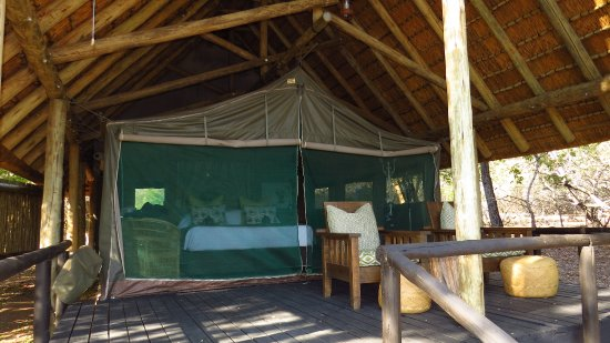 Timbavati Private Nature Reserve, Sydafrika: View of the entrance to tent #2 - nice porch with chairs to enjoy the view.