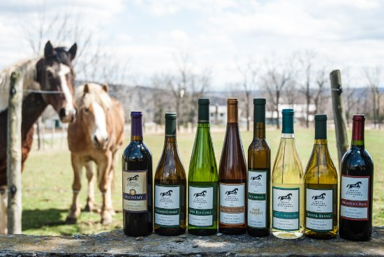 Branchport, NY: The wines (and the horses).