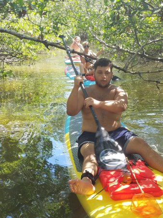 Manasota Key, Флорида: Paddling in a mangrove tunnel!