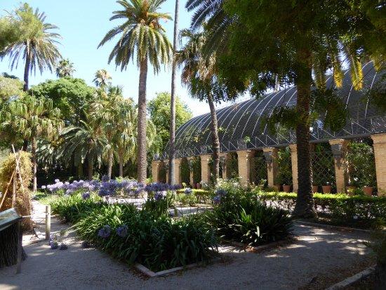 Le jardin botanique qui vaut une bonne promenade paisible for Jardin botanique 78